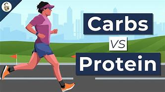 Carbs vs Protein For Endurance -Which Is Better?